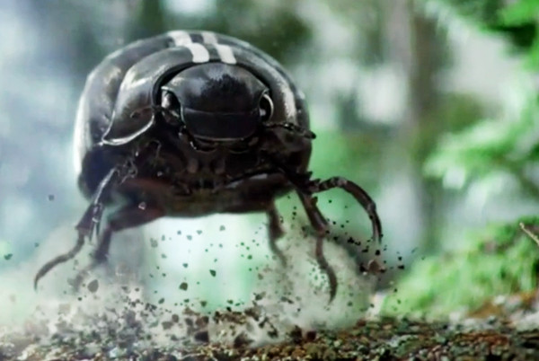 The Mill – New Beetle